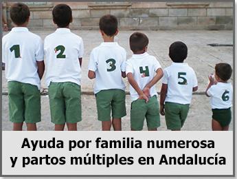 Ayuda-por-familia-numerosa-y-partos-múltiplesa