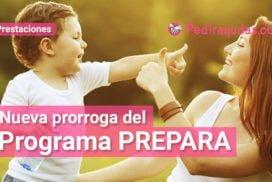 Programa Prepara Pedirayudas
